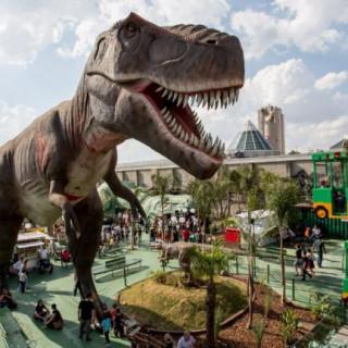 Destinos para viajar com crianças no Brasil